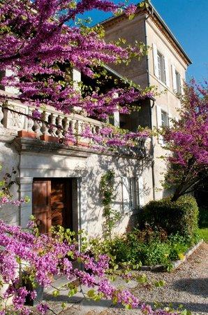 Villa Saint Patrice : Exterieur