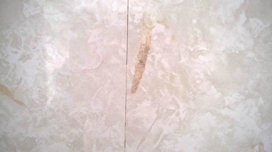 Shap Wells Hotel: Odd marks on the wall