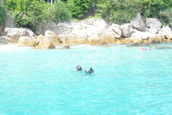 Perhentian Island Resort: sub