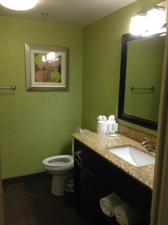 Clarion Hotel Nashville Downtown - Stadium : Bathroom