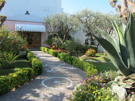 Hotel  Providence Terme & Spa: Ingresso