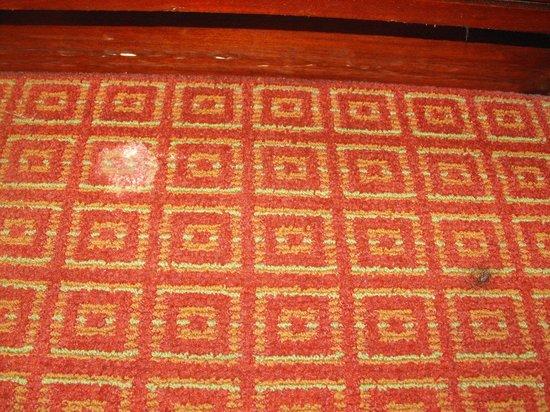 Rosen Inn at Pointe Orlando: stains on the carpet