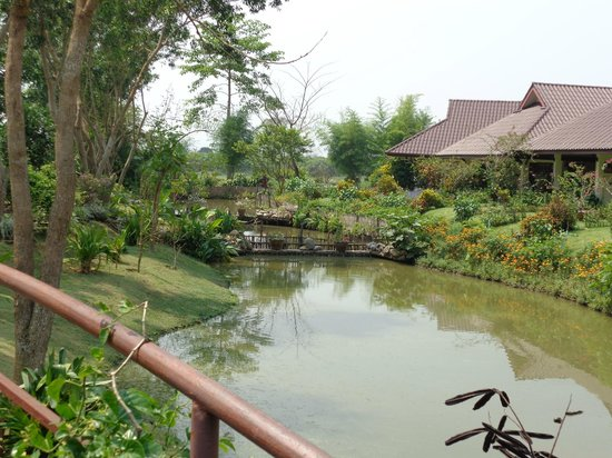 Maekok River Village Resort: View of some rooms and pond