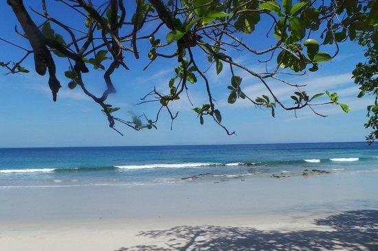Hotel & Club Punta Leona: the joy