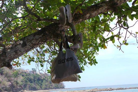 Hotel & Club Punta Leona: our bag holder :)