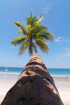 Hotel & Club Punta Leona: white sand beach
