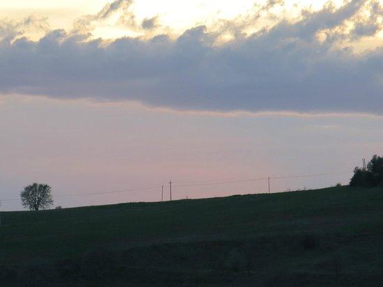 Antica Olivaia : Sunset