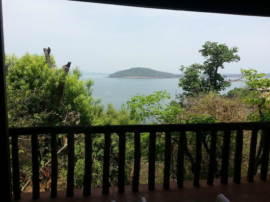 River Tern Lodge: View from Room