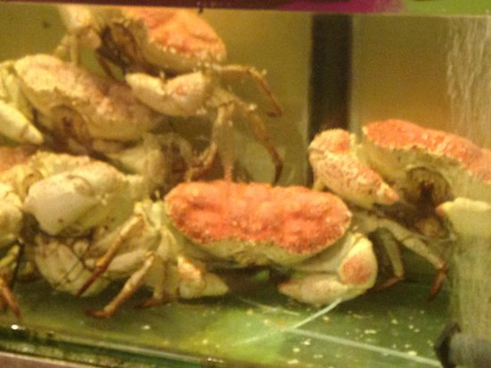 South Sea Seafood: More crabs