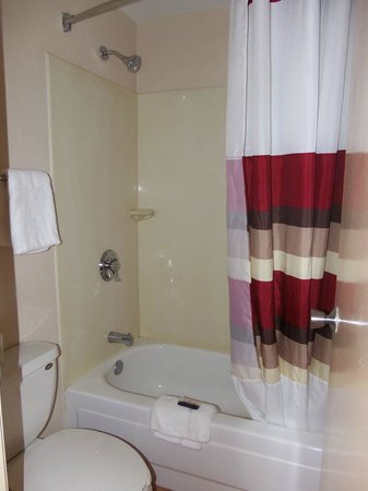 Red Roof Inn Charleston - Kanawha City, WV: clean bathroom