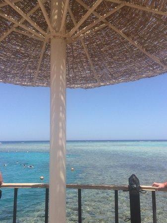Stella Di Mare Beach Resort & Spa Makadi Bay : dal pontile