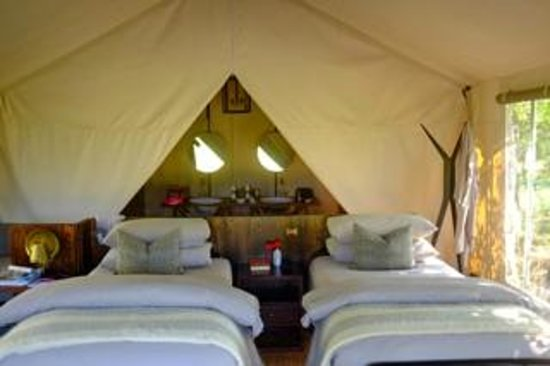 Machaba Camp : The tent