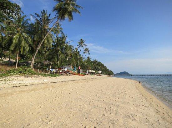 InterContinental Samui Baan Taling Ngam Resort : Strand beim Hotel