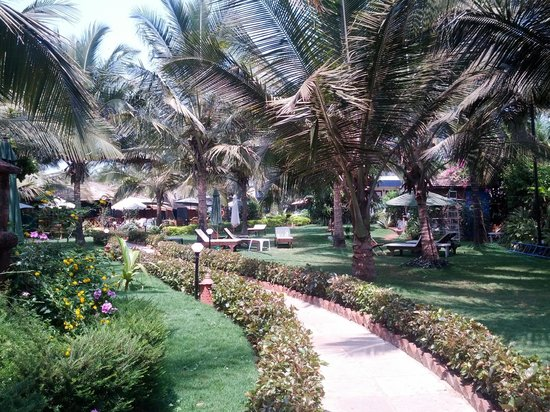 Santana Beach Resort: Grounds