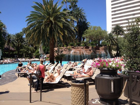 The Mirage Hotel & Casino: Pool