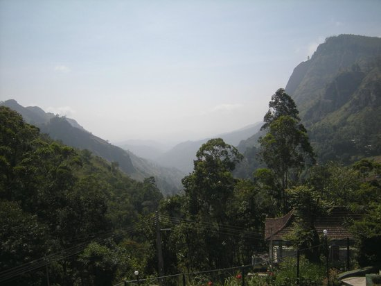 Nuwara Elia et pays du thé : Spectacular Mountains Covered with Tea Planatations