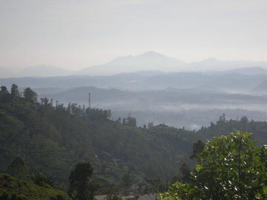 Nuwara Elia et pays du thé : Morning Mist Covers the Mountains