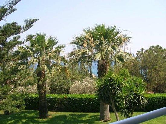 Mediterranean Beach Hotel : территория отеля
