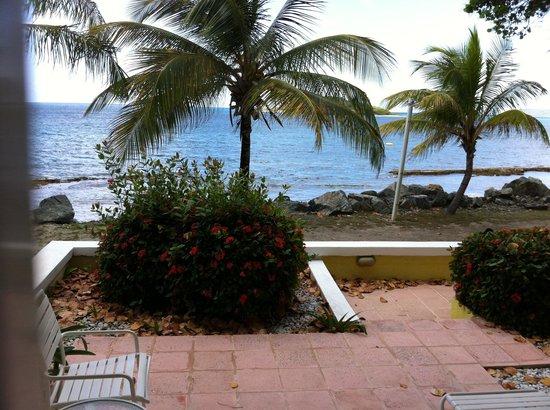 Tamarind Reef Resort, Spa & Marina : View from room