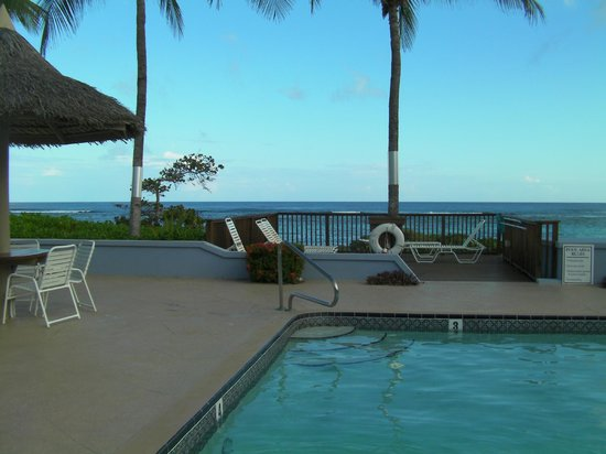 Turtle Nest Inn: Pool and small deck
