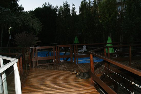 Oasis Apart Hotel: Pileta