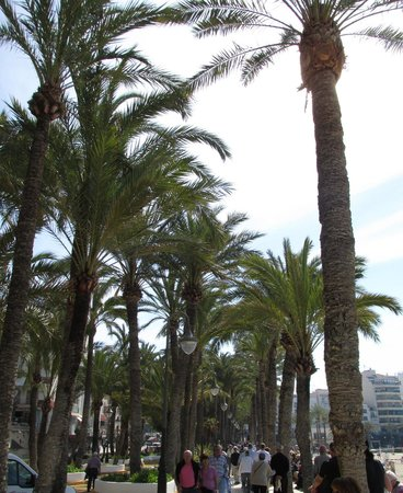 Parque de Elche : Beach one side,play things the other