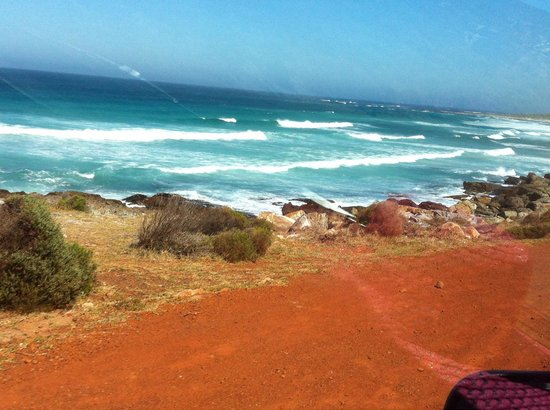 Cape Point: Explosion of colours (and emotions)!