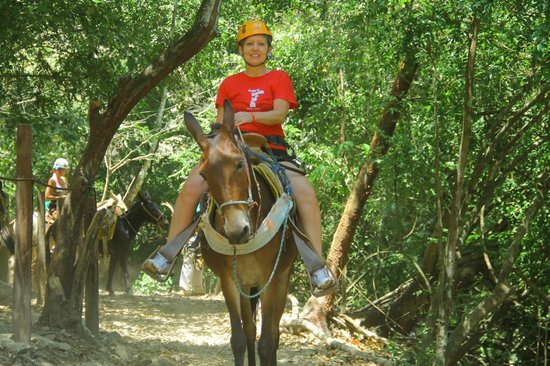 Canopy River : Me on my mule.