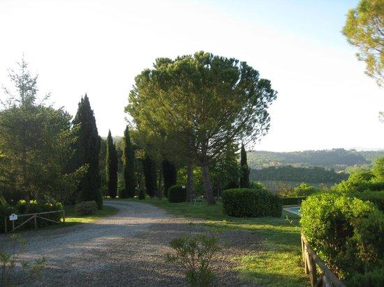 Antico Borgo San Lorenzo: Garden