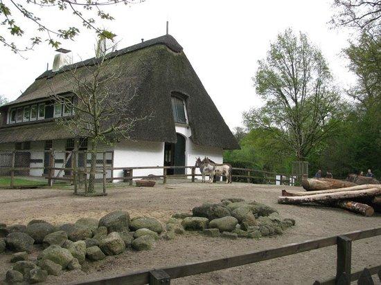 Buergerpark : Животные