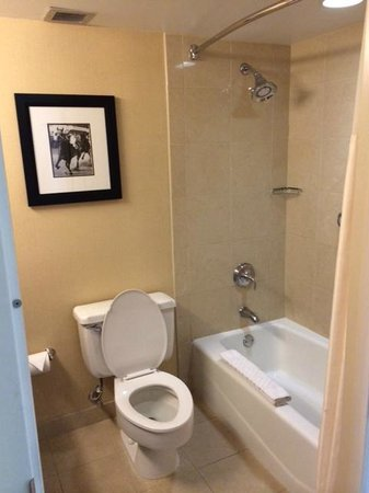 DoubleTree by Hilton Baltimore North - Pikesville : Bathroom