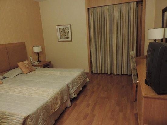 Divani Meteora Hotel: Quarto standard