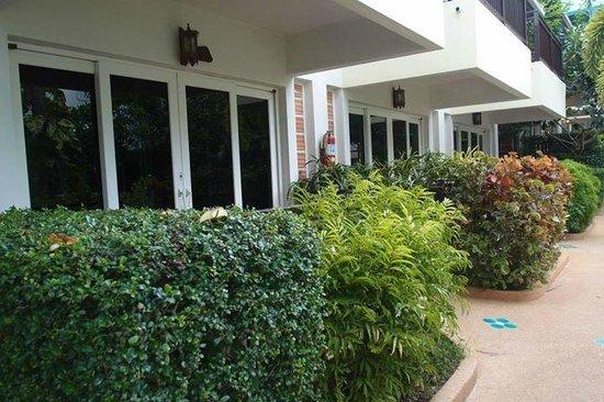 Krabi Tipa Resort: outside my room