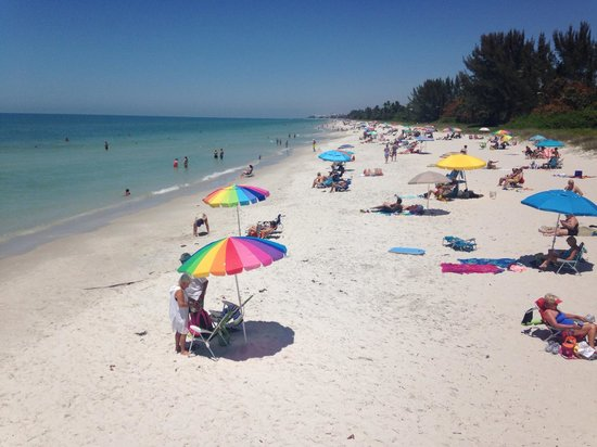Naples Pier: photo from the pier on a busy beach day