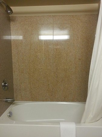 Country Inn & Suites By Carlson, Niagara Falls, ON : Shower (King Studio suite, room 516)