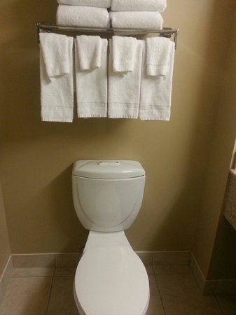 Country Inn & Suites By Carlson, Niagara Falls, ON : Bathroom (King Suite, room 516)