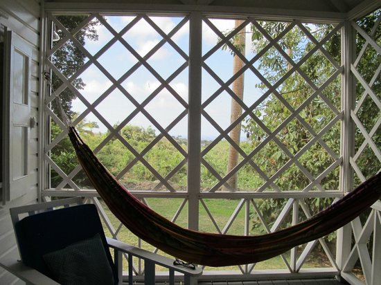 The Hermitage Plantation Inn: Porch hammock
