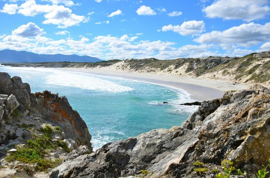 Grootbos Private Nature Reserve: Strand bei Gansbai