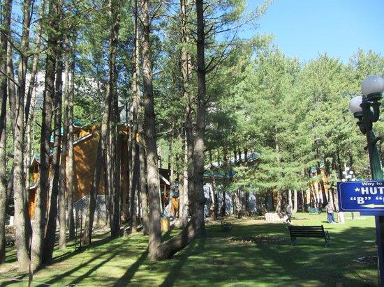 """Grand Mumtaz Resorts Pahalgam : Grounds of the resort with """"Huts"""""""