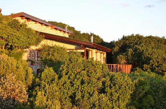 Grootbos Private Nature Reserve: Aussenansicht Bungalow