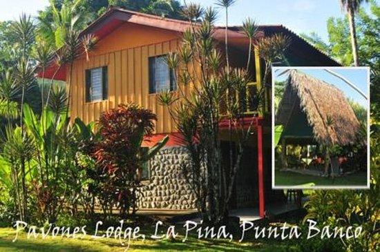Albergue La Piña B&B: La Piña Lodge, main house