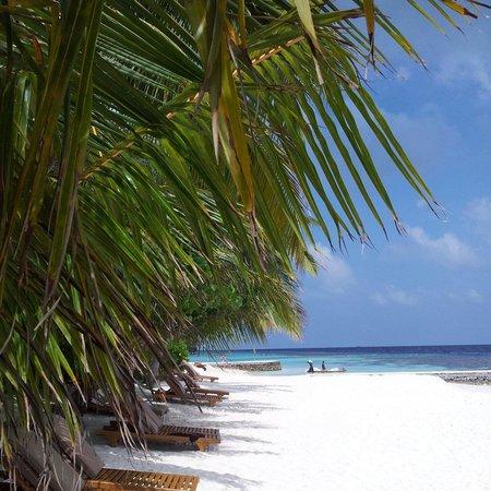 Lily Beach Resort & Spa: Пляж