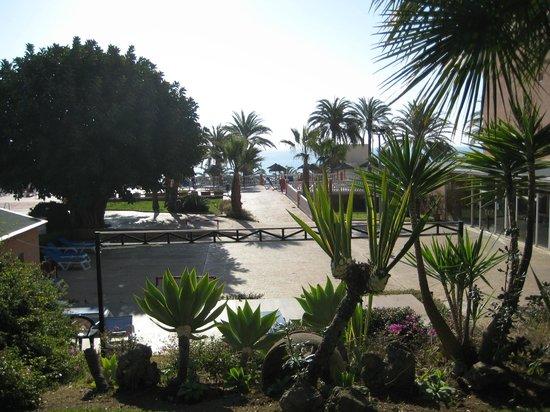 Best Siroco: вид на море из сада отеля