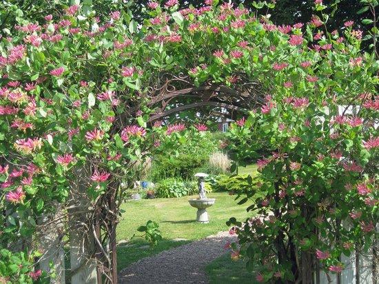 Seascape Coastal Retreat : entrance to our peaceful gardens