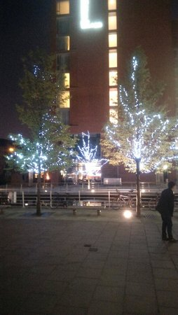 Doubletree by Hilton Hotel Leeds City Centre : Beautiful trees
