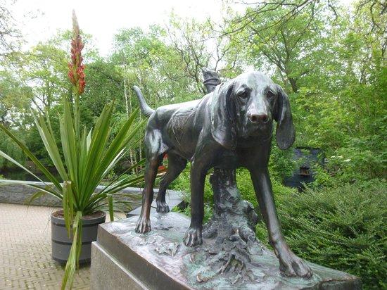 ARTIS Amsterdam Royal Zoo : CORDILYNE INDIVISA IN BLOOM- 19TH-STATUE