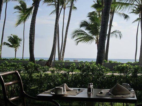 Barcelo Bavaro Beach - Adults Only : buffet view