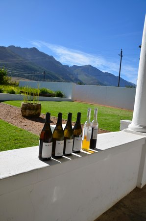 Wine Escapes - Exclusive Cellar & Vineyard Tours: Wine Estate Maison