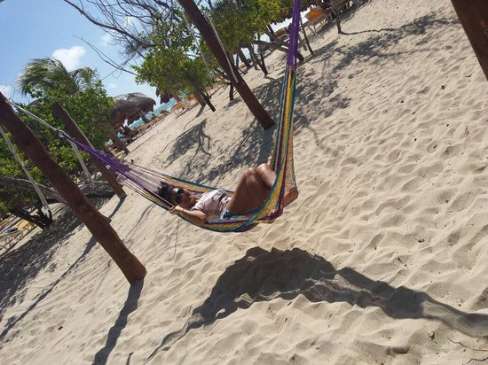 Iberostar Paraiso Beach: Hotel