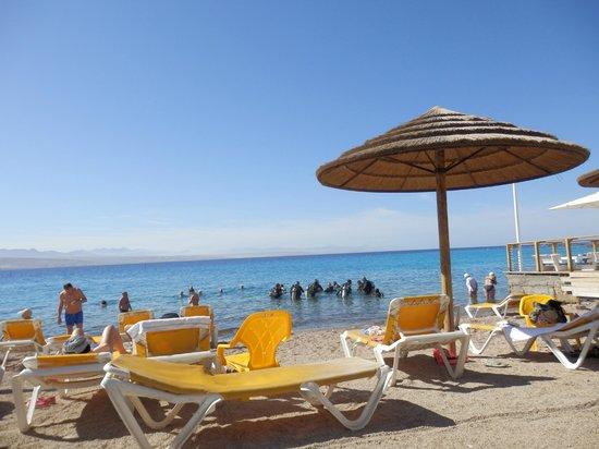 пляж отеля Isrotel Yam Suf Hotel
